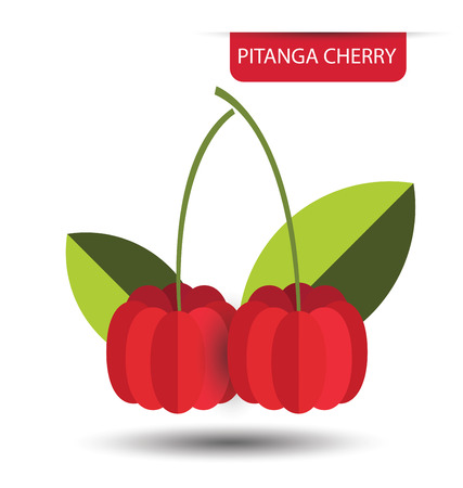 Pitanga cherry, fruit vector illustration