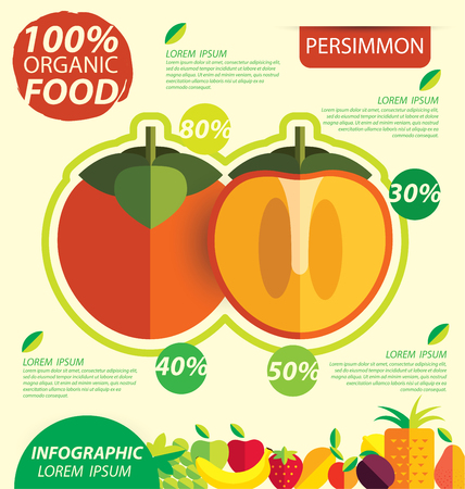 persimmon: Persimmon. Infographic template. vector illustration.