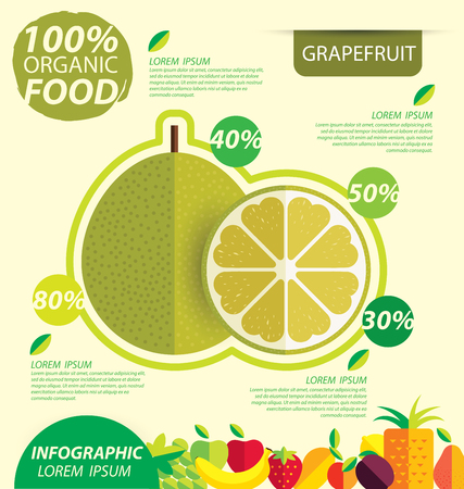grapefruit: Grapefruit. Infographic template. vector illustration.