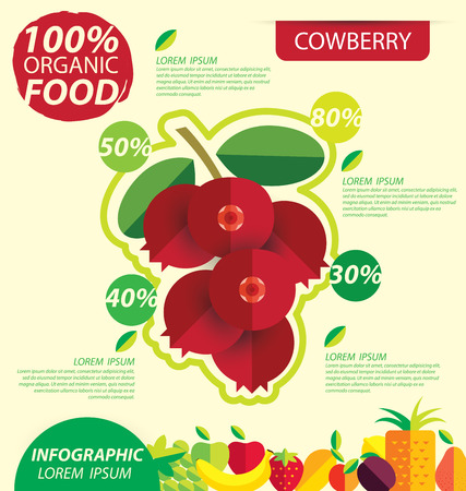 cowberry: Cowberry. Infographic template. vector illustration. Illustration