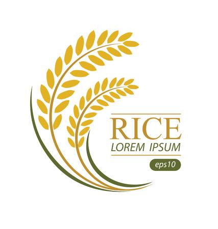 Rice. Vector illustration.  イラスト・ベクター素材