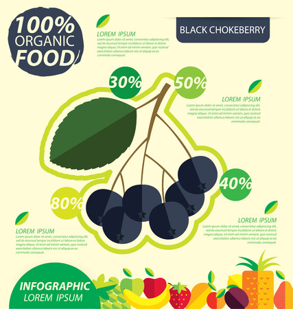 ashberry: Black chokeberry. Infographic template. vector illustration.