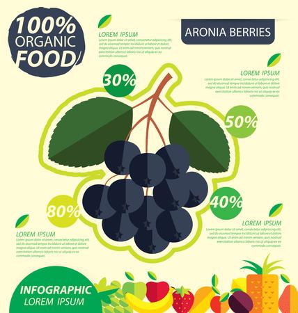 chokeberry: Aronia berries. Infographic template. vector illustrati
