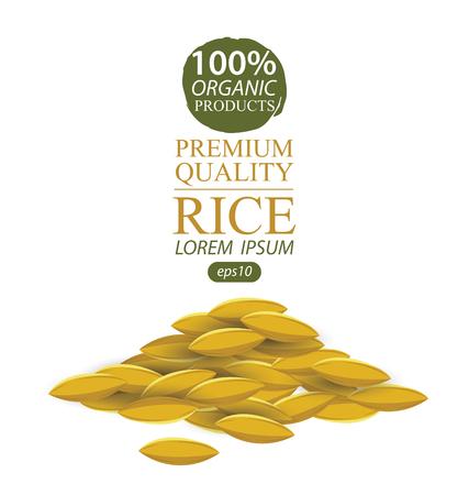 brown rice: Rice grains. Vector illustration.