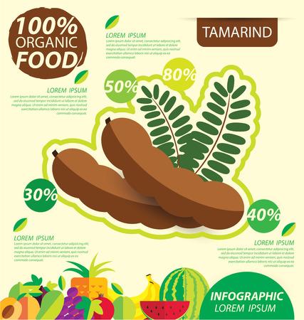 Tamarind. Infographic template. vector illustration.