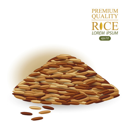 brown rice: Rice grains isolated on white background. Vector illustration.