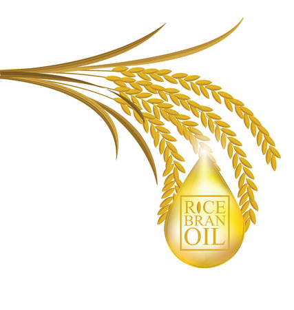 bran: Rice bran oil. Vector illustration.