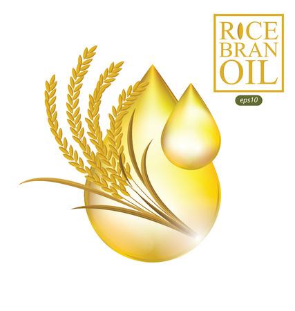 Rice bran oil. Vector illustration.