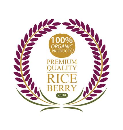Rice berry. Vector illustration. Illustration