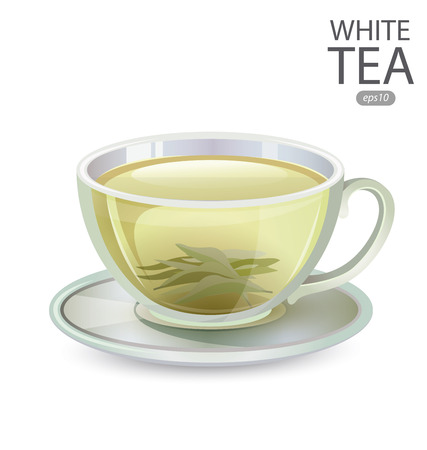 stimulated: Cup of White Tea isolated on white background. Vector illustration. Illustration