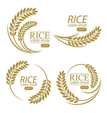 produits céréaliers: Riz. Vector illustration. Illustration