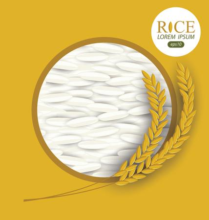 jasmine rice: Rice grains. Vector illustration.