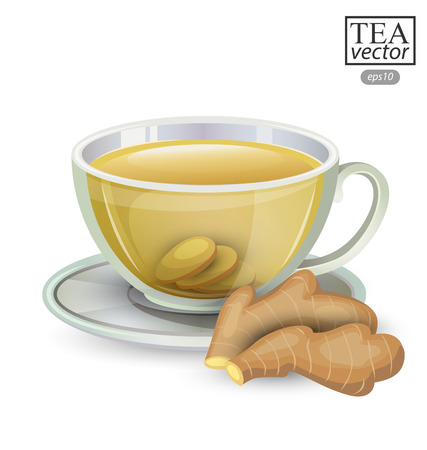 stimulated: Cup of ginger tea isolated on white background. Vector illustration.