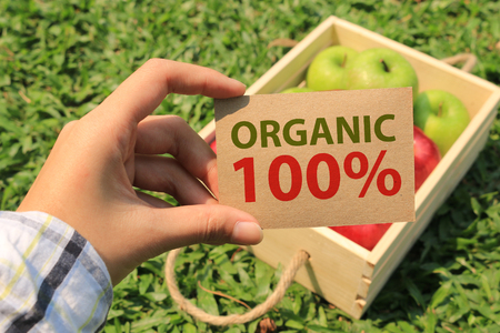 Organic concept. Farmer Holding card. Fresh Apples in a wooden crate on grass.