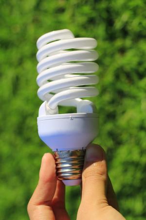 Energy saving concept. Hand holding light bulb on abstract nature background. Standard-Bild - 117410558