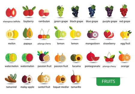 Set of fruit icons. Vector illustration.
