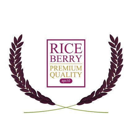 Rice berry. Vector illustration. Illusztráció