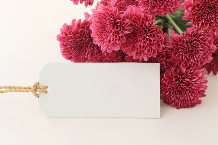 Fresh pink flowers and empty tag for your text on white background