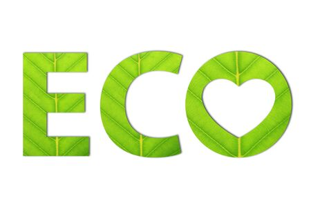 Ecology concept made from green leaves. Stockfoto