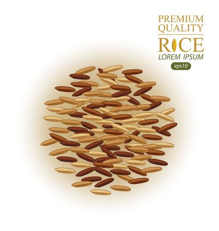 Rice grains isolated on white background. Vector illustration.