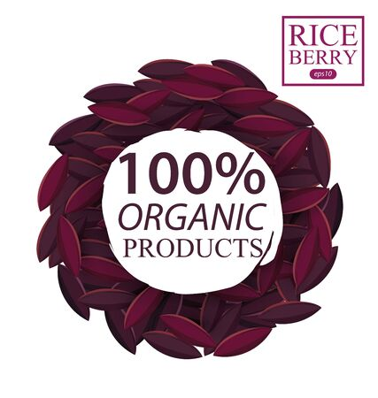 Rice berry. Vector illustration. 向量圖像