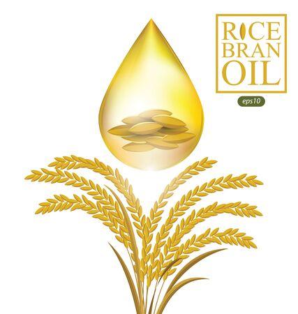Olej z otrębów ryżowych. Ilustracja wektorowa. Ilustracje wektorowe
