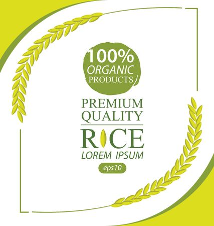 Rice. Vector illustration.