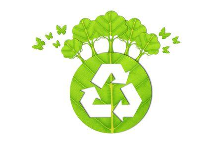 Ecology concept made from green leaves. Reklamní fotografie