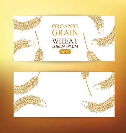 Ears of wheat. Design Banner Template. Vector illustration.