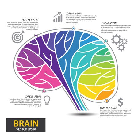 Infographics vector brain design. vector illustration.