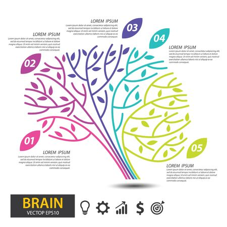 Brain tree design. infographic template for presentation. vector illustration. Иллюстрация