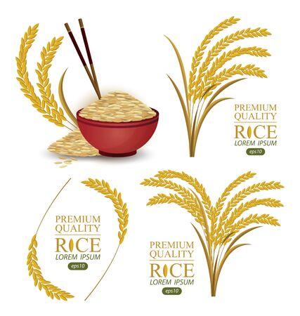 Rice. Vector illustration. Ilustração Vetorial