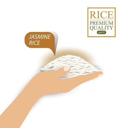 female hands holding jasmine rice. Vector illustration. Illusztráció