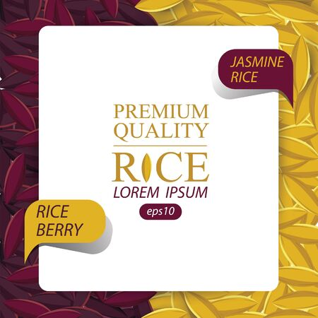 Jasmine rice, Rice berry, Rice grains vector illustration.