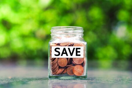 Saving Money for prepare in the future. Money growth concept.