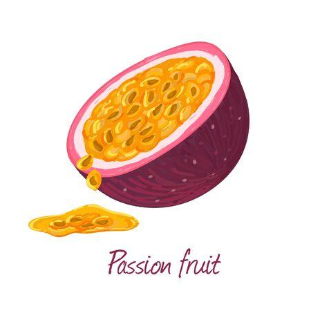 Passion fruit doodle drawings vector illustration. Vector Illustratie