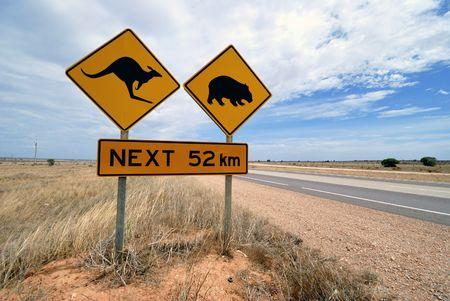 wombat: El canguro, el wombat señal de advertencia en el desierto de Nullarbor carretera en Australia