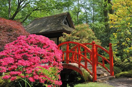Japanese garden with flowers and red bridge
