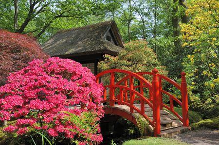 Japanse tuin met bloemen en rode brug Stockfoto