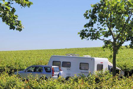 Camping tussen de wijngaarden in Frankrijk, Europa Stockfoto