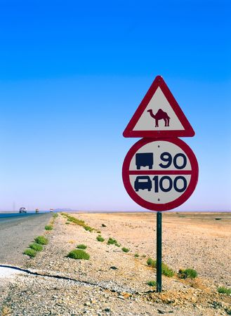 road sign with camel in the middle of the desert photo