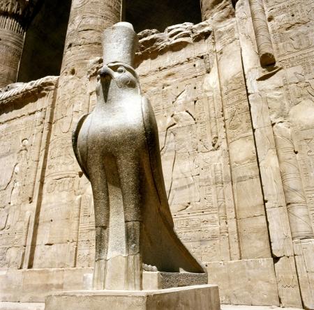horus: Estatua de Horus en el templo de Horus en EdfuIdfoe, Egipto Foto de archivo