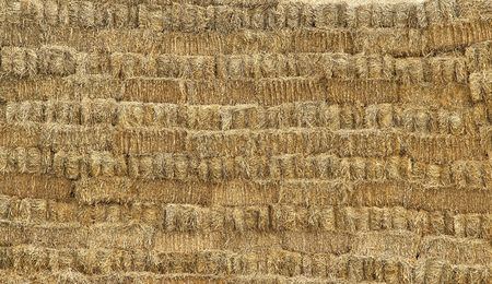 hayrick: stack of straw very usefull as background Stock Photo