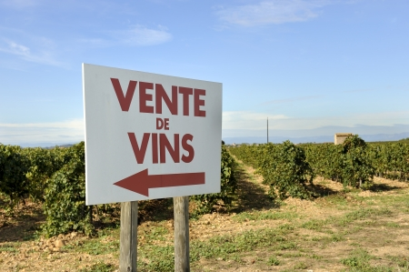 vins:  Sign at a vineyard with the french text  Vente vins that means sale of wine