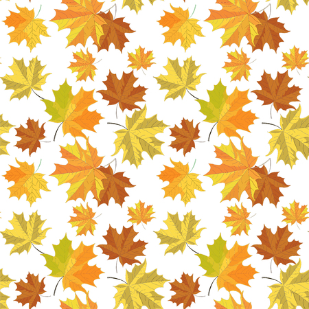 Seamless pattern with maple leaves on white background Ilustrace
