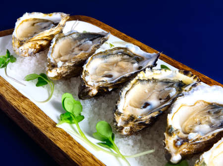 Appetizing dish of fresh oysters served on a bed of crushed ice. Stock Photo