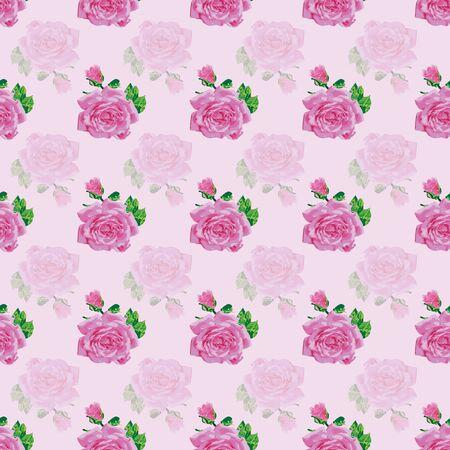 Beautiful vector pink rose repeat pattern print