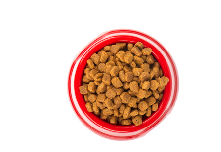 catfood: Red pet feeder. Bowl filled with dried food. Kibble on isolated white background