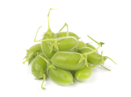 pea pod: Green chickpea in the pod isolated on white background