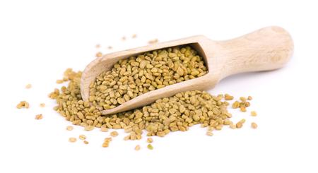 Nasiona kozieradki w drewnianą łyżką, na białym tle. Zdjęcie Seryjne